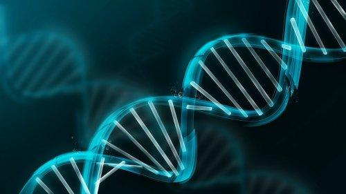 Хранить информацию в... ДНК!