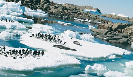 Опасное таяние Антарктиды