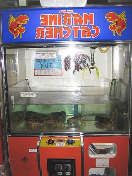 Игровой автомат - вытащи живого краба!