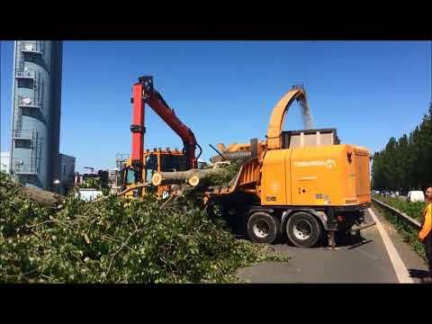 Тяжелая техника для обработки деревьев